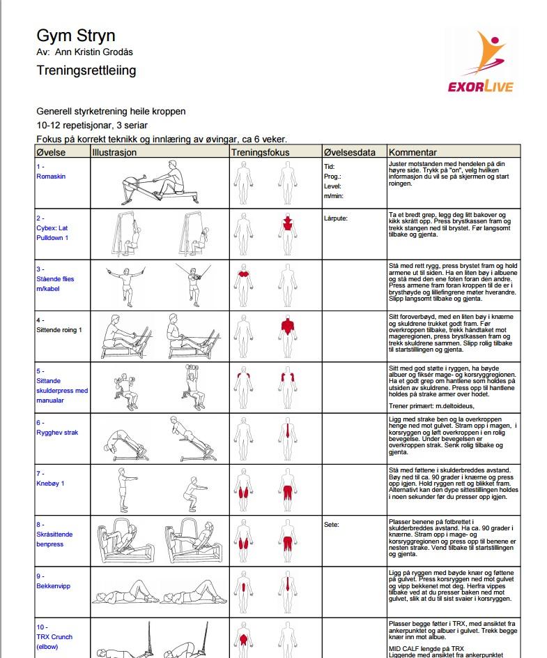 treningsprogram eksempel